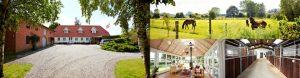 Lystejendom hestefaciliteter Nordfyn